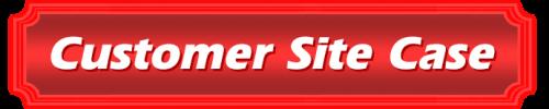 customer site case